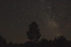 Ciel étoilé à Bourideys