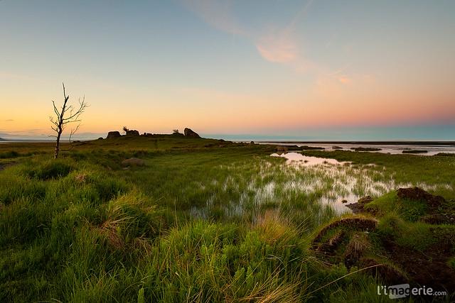 Midnight sun - Hvoll - S. Iceland