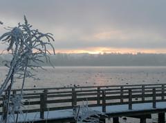 Sonnenaufgang am Starnberger See im Winter
