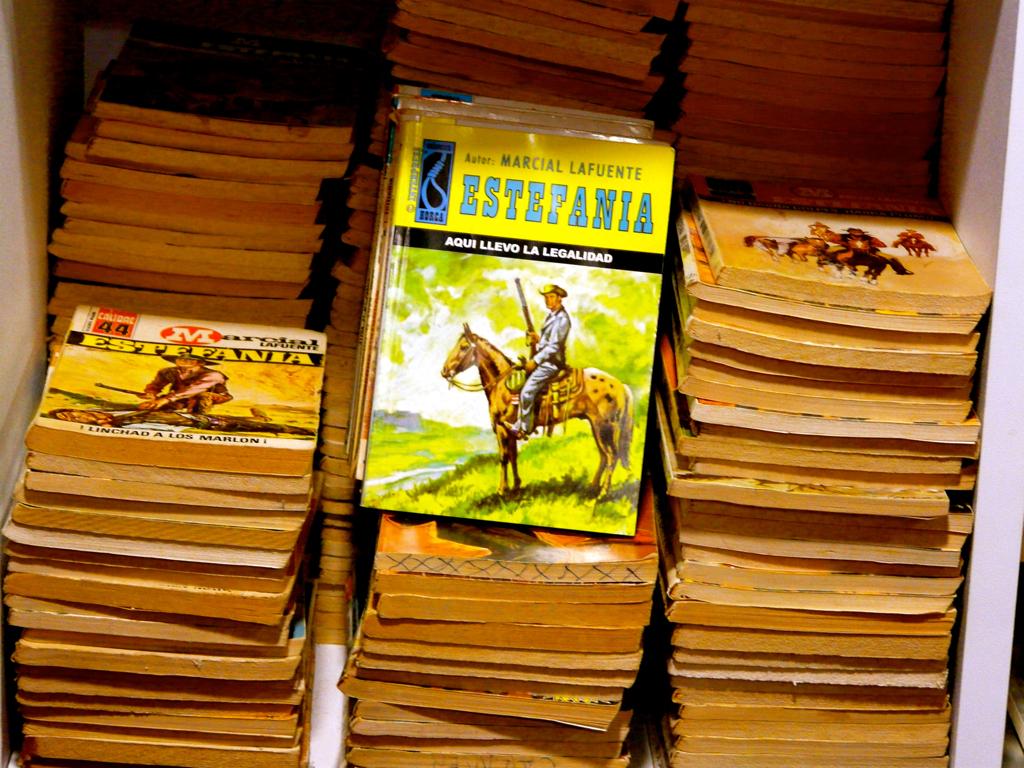 Novelas de M.L. Estefanía. Foto: Antonio Marín Segovia. Flick