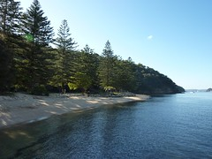 The Basin, Sydney w/ Harris-Smiths - 10