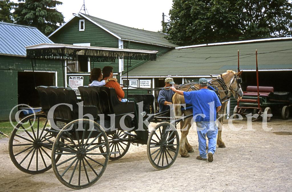 Mackinac Island Horse Buggy Rental