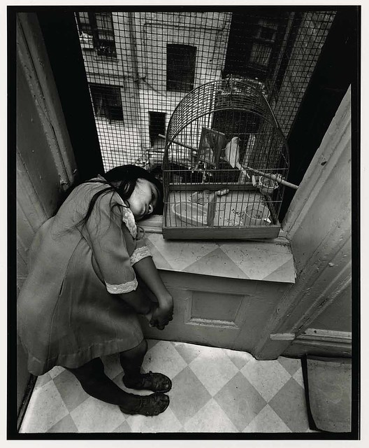 Girl with bird in cage, by Bruce Davidson 1966