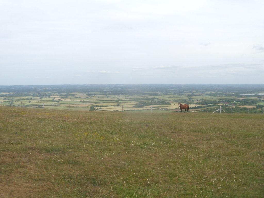 Horse Glynde to Seaford