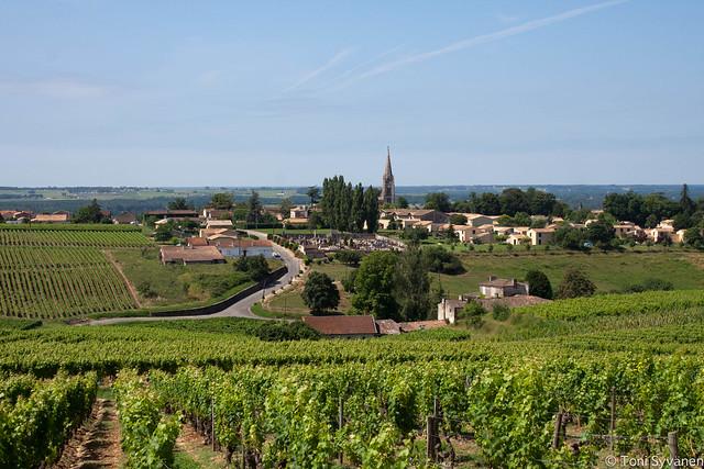 Wine yards behind Saiten Croix du Mont