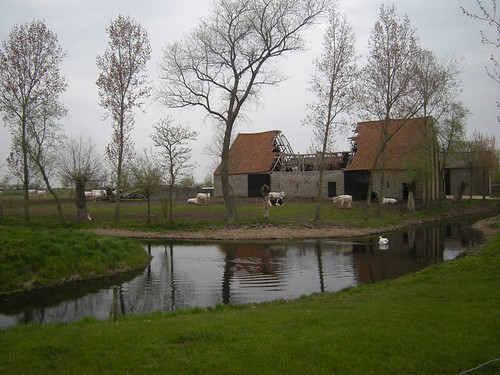 De Grote Fockewerve, Alveringem