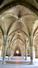 gothic architecture(1.0), symmetry(1.0), arch(1.0), building(1.0), architecture(1.0), vault(1.0), aisle(1.0), arcade(1.0), crypt(1.0),