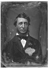 Henry David Thoreau, by Benjamin D. Maxham 1856