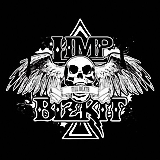 limp bizkit logo flickr photo sharing