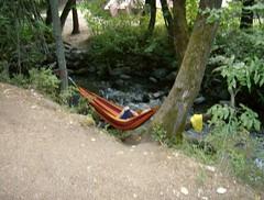 canoe(0.0), vehicle(0.0), watercraft rowing(0.0), watercraft(0.0), boat(0.0), hammock(1.0),