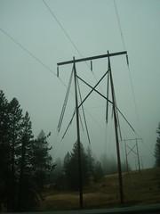electric poles.