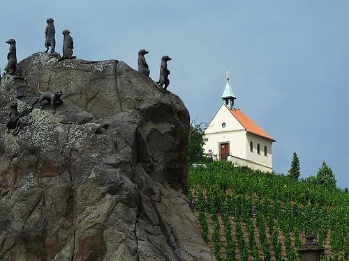 Praha: Vinice sv. Kláry