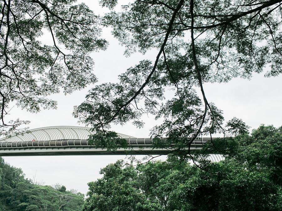 Singapore Prewedding Photographer