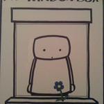 My window box
