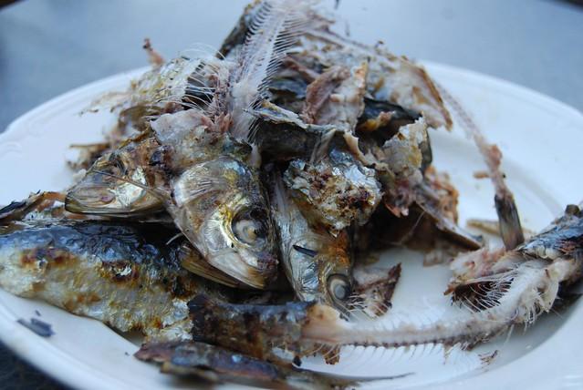 geroosterde sardines