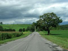 Cobourg2010-6