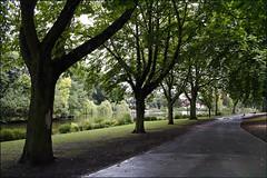 Handsworth Park Walk 8/10 (fv13)