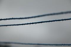 Washing line droplets