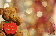 heart(0.0), valentine's day(0.0), teddy bear(1.0), pink(1.0), toy(1.0),