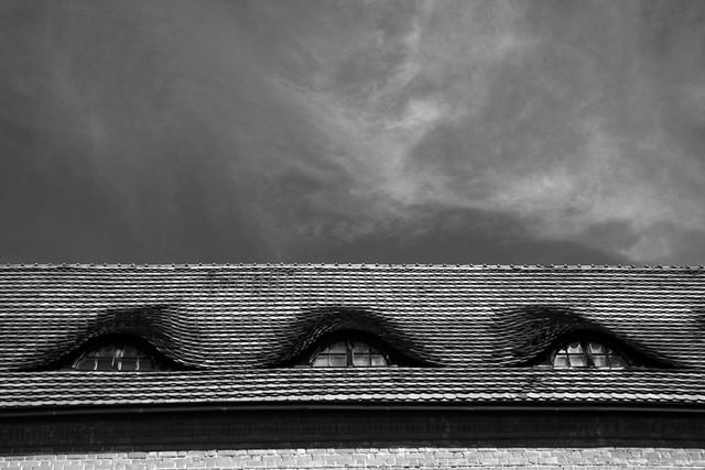 A Kaunas Roof
