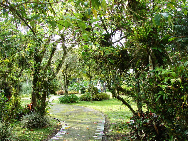 Photo - Jardines costa rica ...