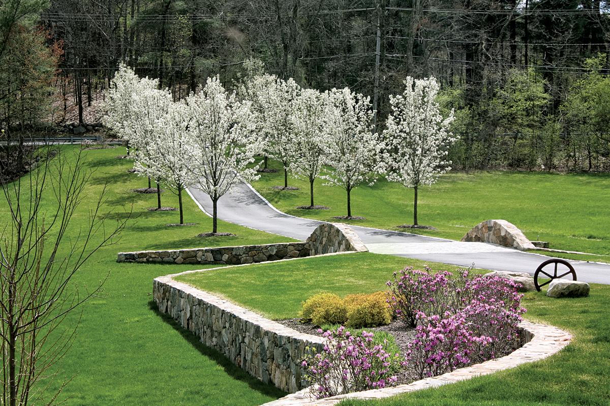 Landscape by strawberry hill landscape irrigation for Hill landscape design
