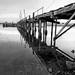 Bodega Pier