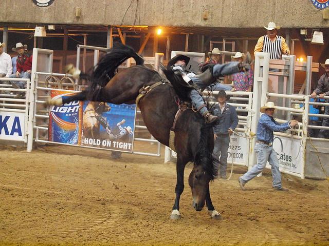 Flickriver Photoset Pasadena Texas Professional Rodeo