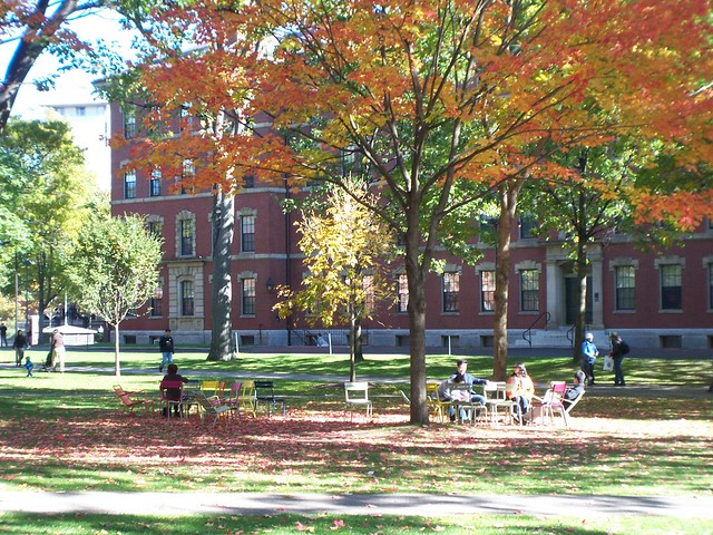 relaxing in harvard yard in the fall