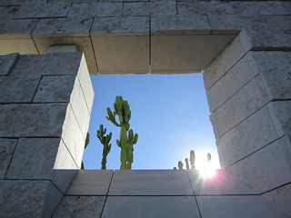 Cactus Garden as seen through an architectural window at the Getty Center in Los Angeles, California