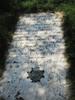 Arlington National Cemetery - Joseph Carleton by etacar11
