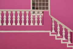 pink, with white trim