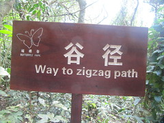 Way to ZigZag Path