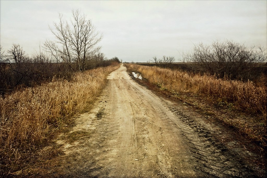 . dirt track .