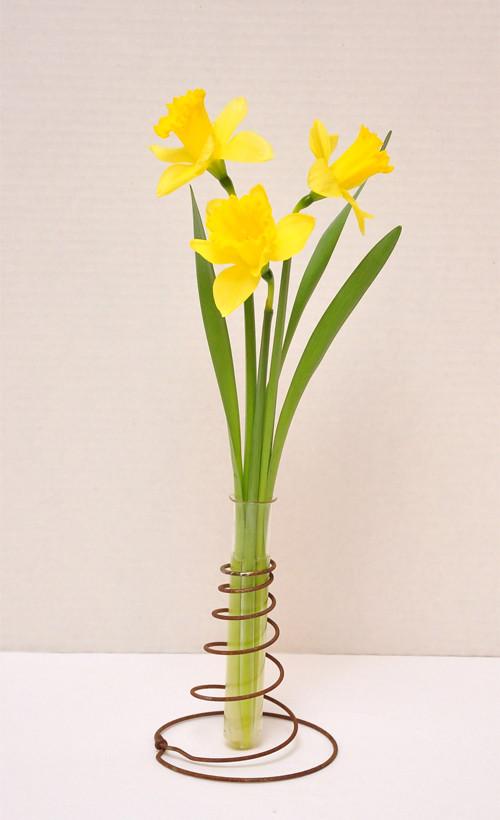 Pretty diy vintage bed spring and test tube genius for Test tube flower vase rack