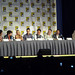 Big Bang Theory panel