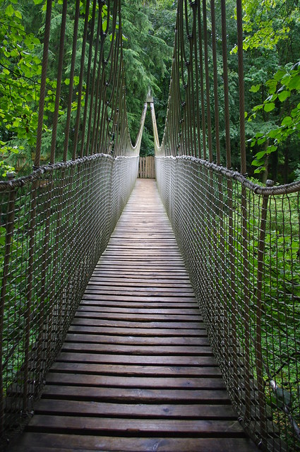Treehouse Rope Bridge Flickr Photo Sharing
