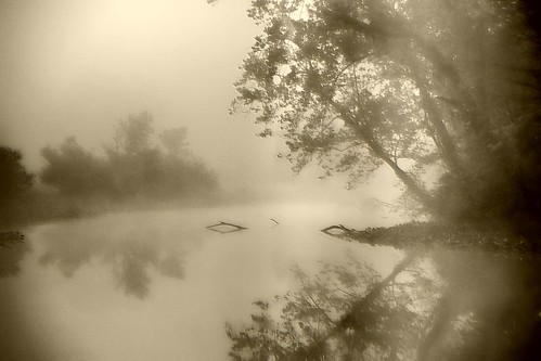 Misty in Sepia