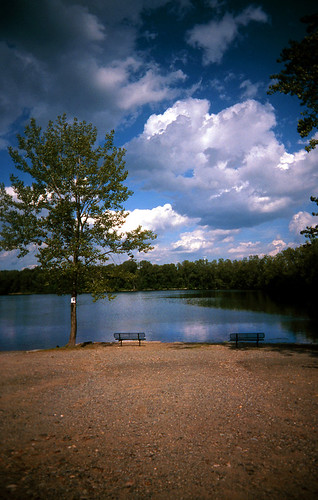Woodland Lake / Summer 2010