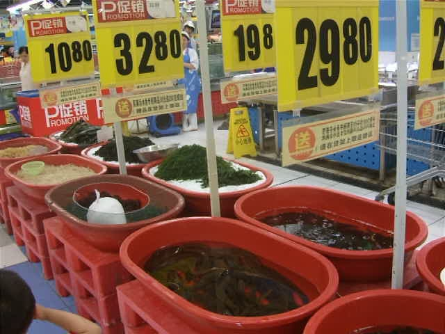 Live eels in Jinxiu Tesco