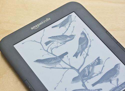 lecteurs ebook l 39 encre lectronique ne coule plus. Black Bedroom Furniture Sets. Home Design Ideas