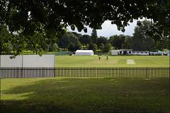 Handsworth Park Walk 8/10 (fv35)