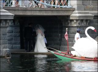 Wedding under the bridge