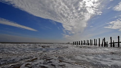 Beach groyns Spurn head