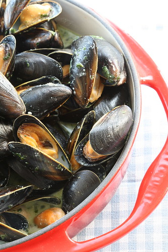 Mussels with pesto cream / Rannakarbid pesto-koorekastmega