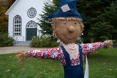 The Nice Scarecrow