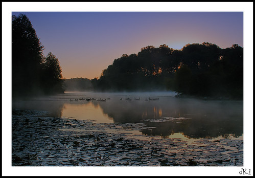 morning mist sunrise canon rebel dawn geese 28mm maryland columbia centennialpark centenniallake 101010 dki ef28mmf18usm t1i
