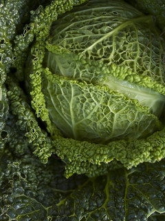 Cabbage in October 1