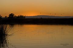 Delta Sunset!