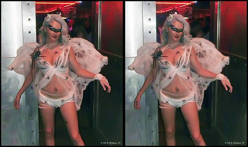 costumes ladies woman sexy halloween beautiful lady female bar club fun stereoscopic stereogram 3d crosseye women brittany pretty spiders gorgeous brian fine makeup dressup celebration indoors stereo fantasy linda wallace inside stereopair gals depth built stacked skimpy pretend stereoscopy stereographic freeview crossview brianwallace xview stereoimage xeye cancuncantina stereopicture